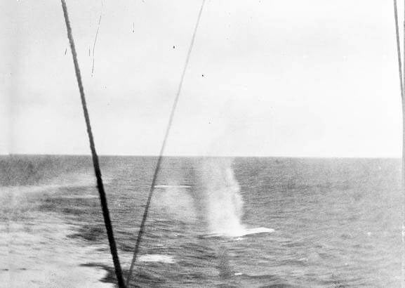 hots fired by SMS Scharnhorst landing in the sea behind HMS Invincible during the Battle of the Falkland Islands on 8th December 1914 in the First World War: photograph taken by Paymaster Sub-Lieutenant Duckworth RN from HMS Invincible