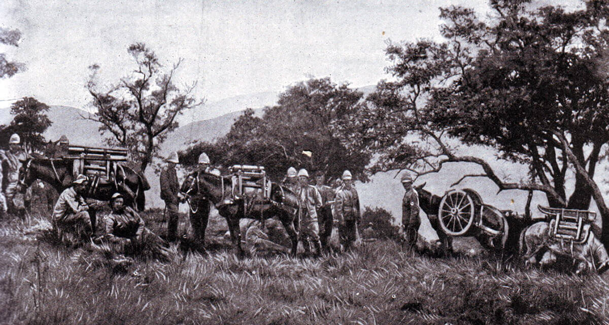 Royal Garrison Artillery Mountain Battery on mules in South Africa 1889
