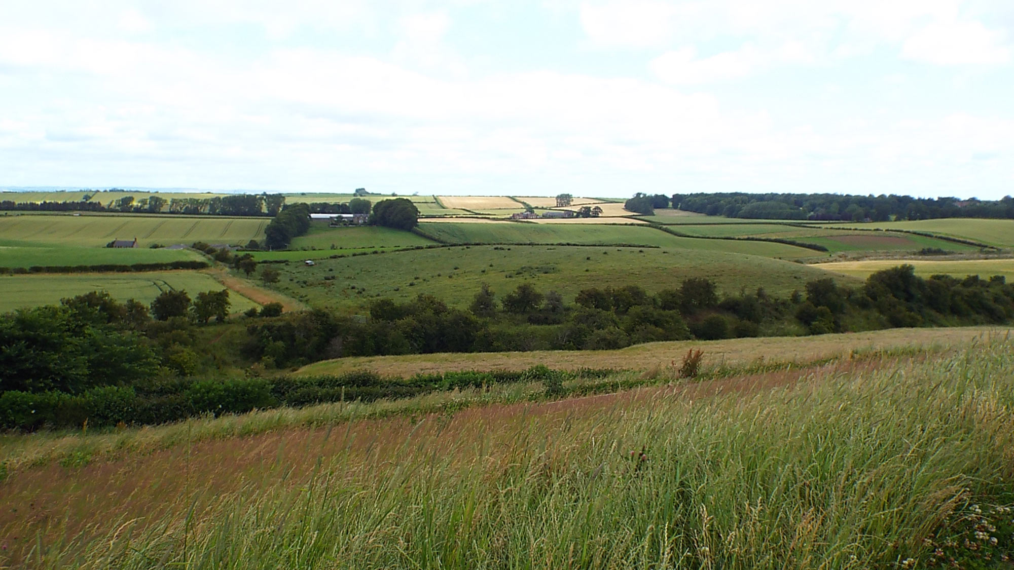 Battle of Flodden:  Modern view from the English position across the valley to the Scottish position at the beginning of the battle and from which the Scots advanced to the attack.