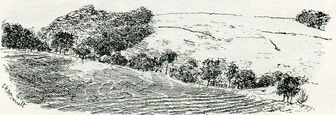 Roundway Down east side: Battle of Roundway Down on 13th July 1643 during the English Civil War: drawing by C.R.B. Barrett