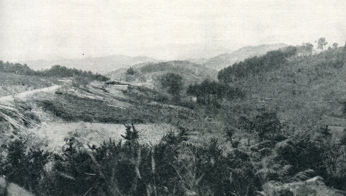Battlefield of the Battle of Busaco on 27th September 1810 in the Peninsular War: the position of Craufurd's Light Brigade was on the right of the scene