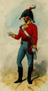 Officer of the 9th East Norfolk Regiment: Battle of Salamanca on 22nd July 1812 during the Peninsular War: picture by Richard Simkin: buy this picture