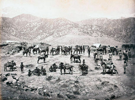 Derajat Mountain Battery: Black Mountain Expedition, 1st March 1891 to 29th May 1891 on the North-West Frontier in India