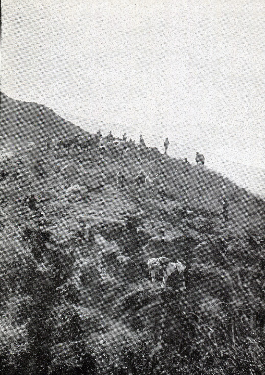 Sir Robert Low and his staff on the Janbatai Pass: Siege and Relief of Chitral, 3rd March to 20th April 1895 on the North-West Frontier of India