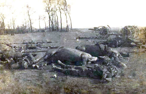 Dead horses and men around an 18 pounder British field gun: Battle of Le Cateau on 26th August 1914 in the First World War
