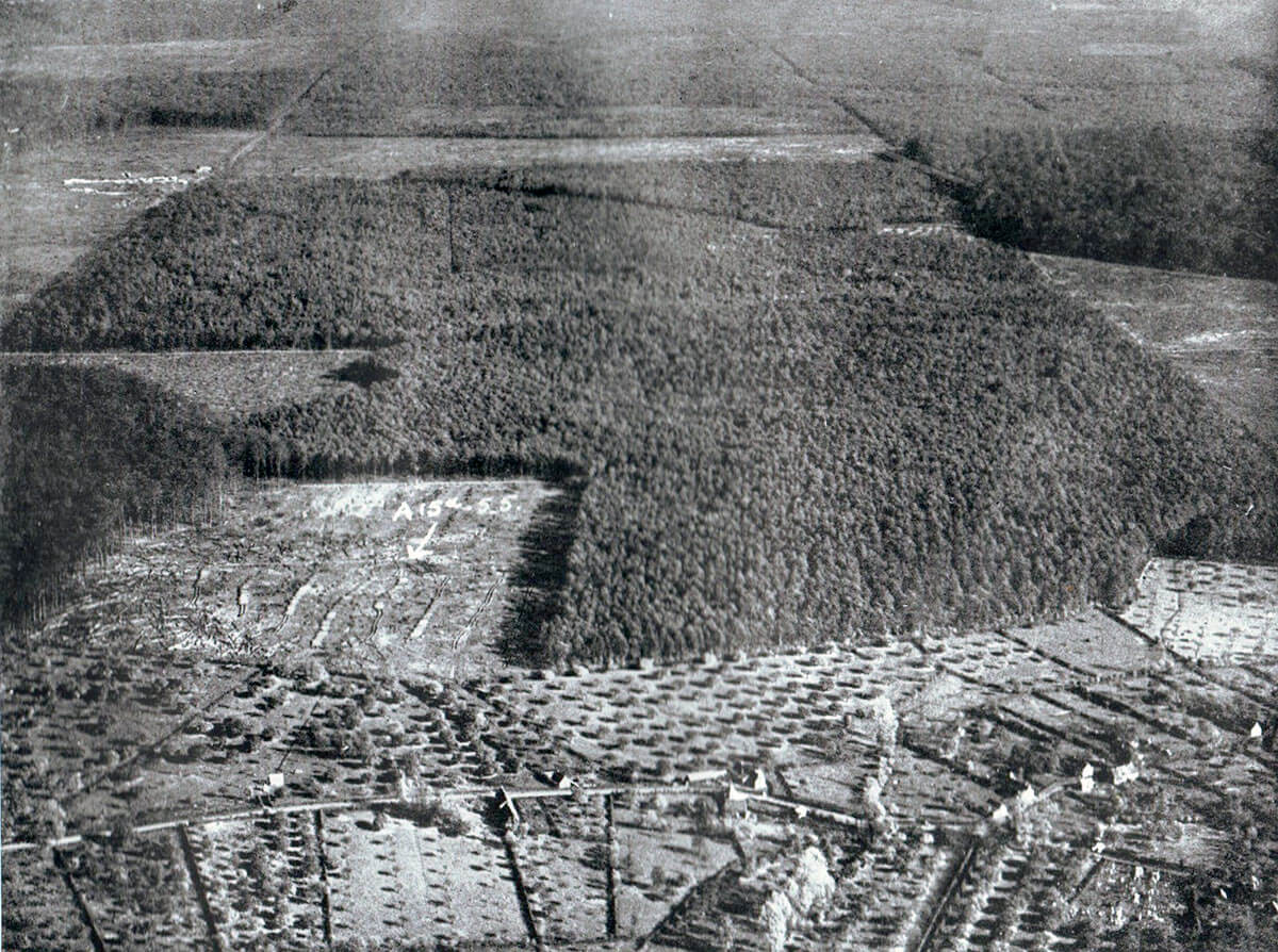Aerial view of the southern end of the Forest of Mormal: Battle of Le Cateau on 26th August 1914 in the First World War