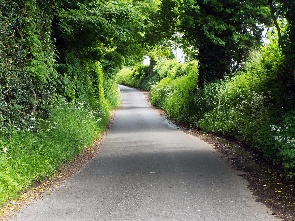 Skinner's Green Lane leading up to the Round Hill, the route taken by Sergeant Major General Philip Skippon and his Parliamentary force in the early hours of 20th September 1643 in the First Battle of Newbury in the English Civil War