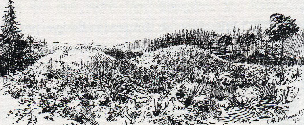 Burial Mounds for casualties at the First Battle of Newbury on 20th September 1643 during the English Civil War: drawing by C.R.B. Barrett