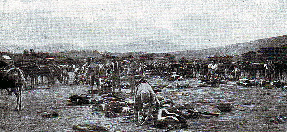 Thorneycroft's Mounted Infantry in camp in Natal: the regiment attacked Hlangwane Mountain as part of Dundonald's Mounted Brigade at the Battle of Colenso on 15th December 1899