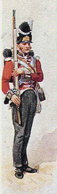 Grenadier of the 5th (Northumberland) Regiment: Battle of El Bodon on 25th September 1811 in the Peninsular War: picture by Richard Simkin