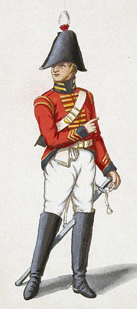 Officer of the British 9th Regiment: Battle of Roliça on 17th August 1808 in the Peninsular War