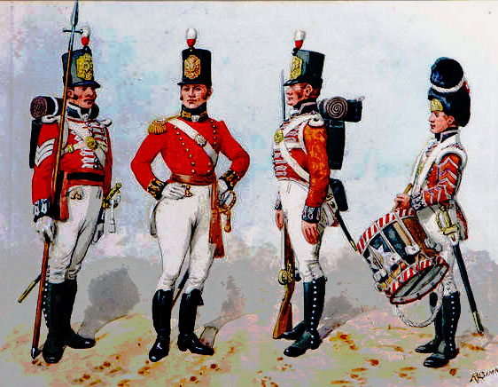 Sergeant, Officer, Soldier and Drummer of British infantry: Battle of Roliça on 17th August 1808 in the Peninsular War