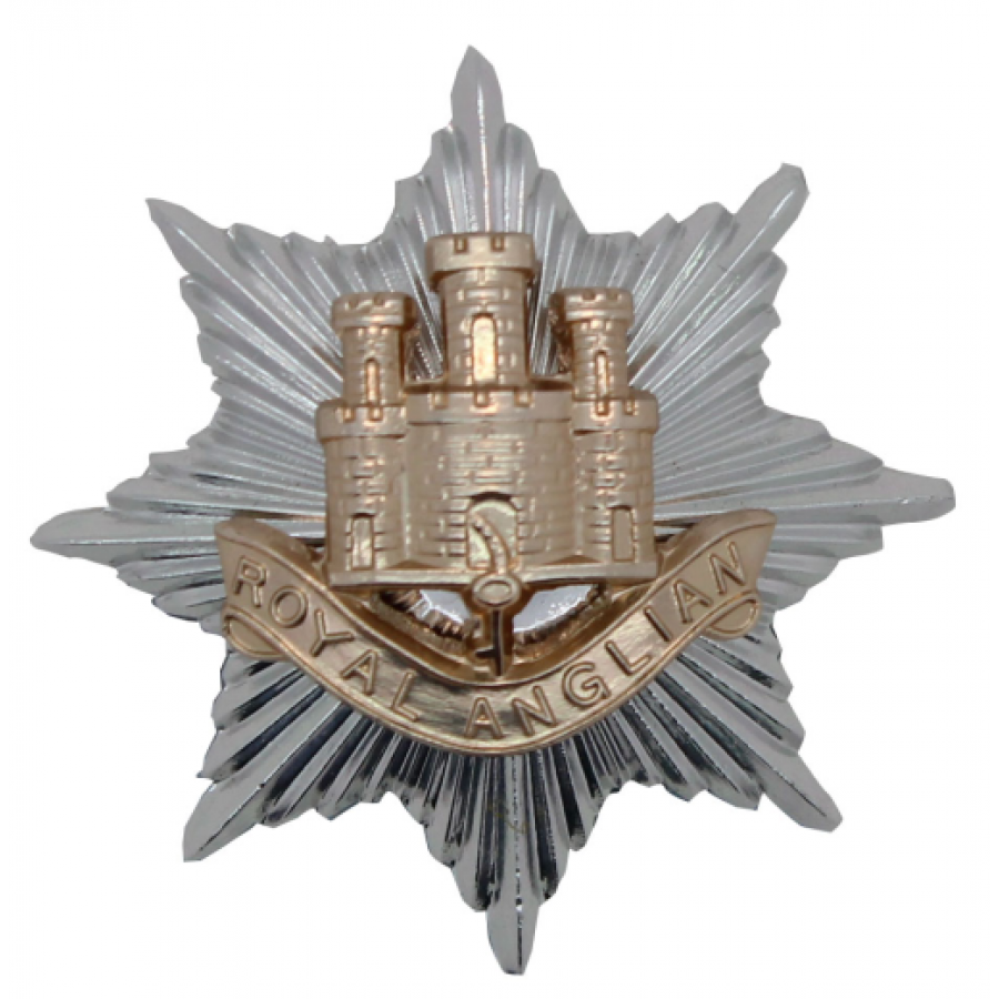 Badge of the Royal Anglian Regiment, with the 'Castle and Key' after the Great Siege of Gibraltar from 1779 to 1783 during the American Revolutionary War