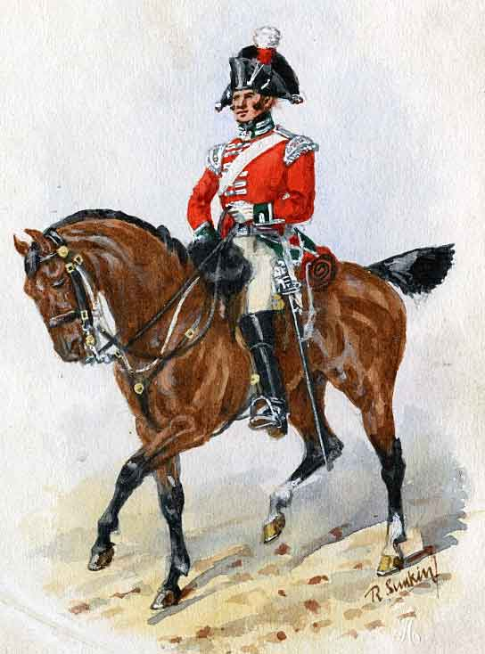 Officer of British 4th Queen's Own Dragoons: Battle of Usagre on 25th May 1811 in the Peninsular War: picture by Richard Simkin