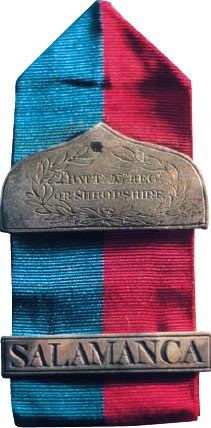 Chevron awarded to Sergeant Thomas Cox of the 53rd Regiment for bravery at the Battle of Salamanca on 22nd July 1812 during the Peninsular War, also known as the Battle of Los Arapiles or Les Arapiles