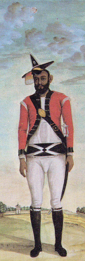 Subedar of Bengal Infantry: Battle of Laswaree on 1st November 1803 in the Second Mahratta War