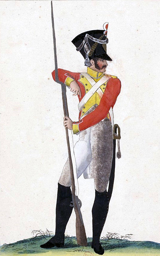 Swiss Regiment in French Service: Battle of Maida or Santa Euphemia on 4th July 1806 in the Napoleonic Wars