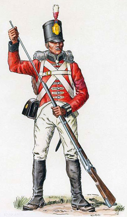 Soldier of De Watteville's Regiment: Battle of Maida or Santa Euphemie on 4th July 1806 in the Napoleonic Wars